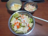 馬鈴薯沙拉及雞肉生菜沙拉