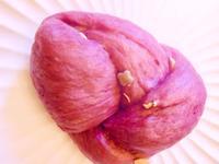 低糖珍穀紫薯饅頭