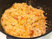 寶寶蕃茄鮭魚燉飯 「飛利浦金小萬」
