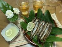 醬烤柳葉魚