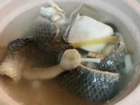 魚皮菇菇湯