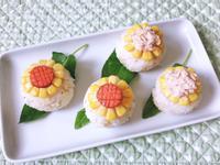 向日葵飯球飯團(便當/午餐)