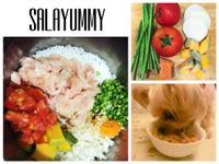 莎拉寵物鮮食-雞胸蘆筍蔬菜餐