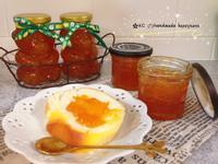 🍊橘子果醬🍊(不苦澀)
