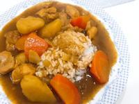 雞肉咖哩飯(爪哇咖哩)