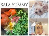 莎拉寵物鮮食-芝麻日常牛肉薑黃茼蒿餐