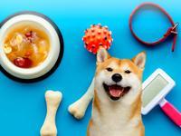 狗狗食譜 銀耳白木耳桂圓紅棗