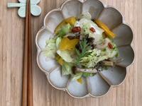 便當菜-鴻喜菇炒高麗菜