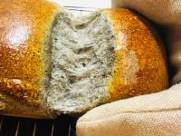 100°C湯種製作