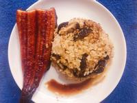 日式料理-紅藜鰻魚飯 (省時簡單)