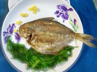 【肉鯽仔】魚兒魚兒水中游
