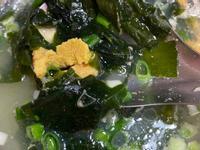 海膽海帶湯