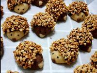 巧克力刺蝟餅乾