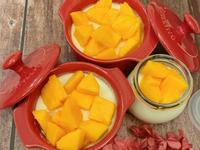 🥭芒果鮮奶酪🥭