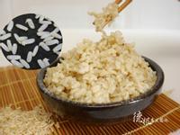DIY有機摧芽玄米