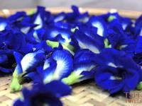 ♦泰泰風♦泰式甜點色彩很繽紛,藍色的來源是蝶豆藍花