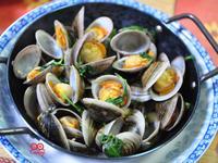 塔香赤嘴蛤(環文蛤)