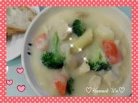 ☆*:.雞肉蔬菜奶油濃湯.:*☆