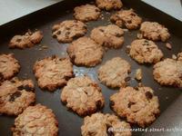 小烤箱做低糖燕麥堅果餅乾(另有大烤箱版)