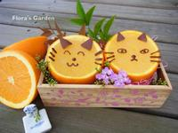 貓咪香橙銀耳凍✿落建養髮料理