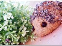 ♥毛毛♥小刺蝟麵包♥超萌相似度99%