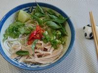 [湯麵]越南雞肉河粉(米線版)