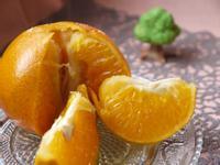 香烤橘子~