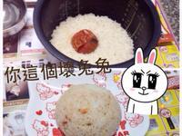 ♥懶人電鍋~蕃茄飯♥