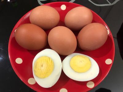 飛利浦萬用鍋-水煮蛋