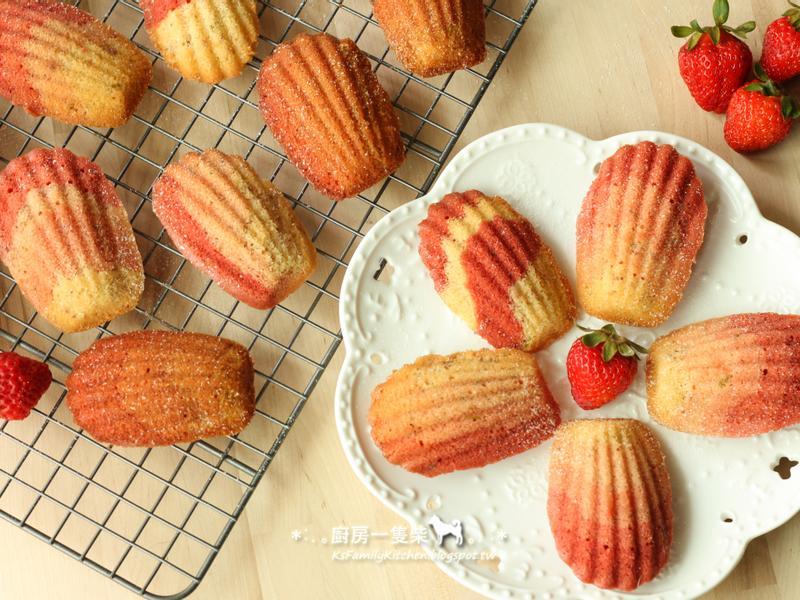 草莓彩虹馬德蓮