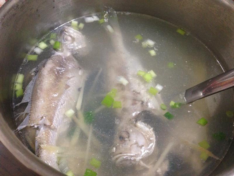 樑香薑絲鮮魚湯