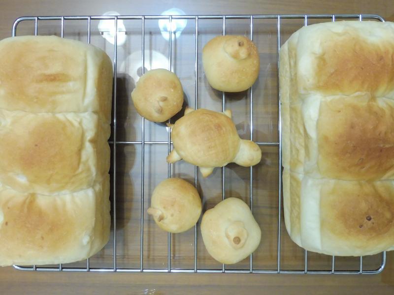 馬鈴薯奶油吐司+麵包-杮杮如意  平安龜