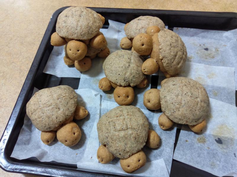 烏龜造型全麥菠蘿麵包