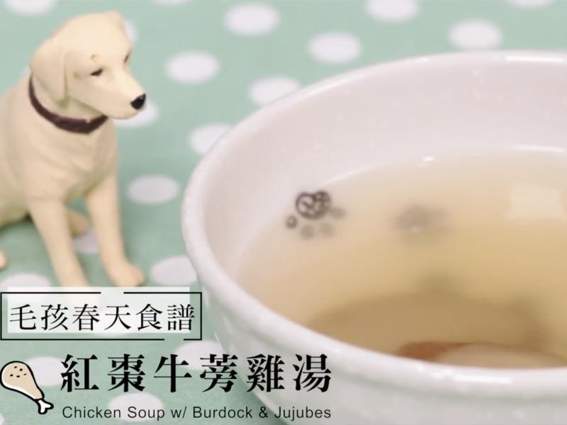 [寵物鮮食食譜] 紅棗牛蒡雞湯,狗貓鮮食