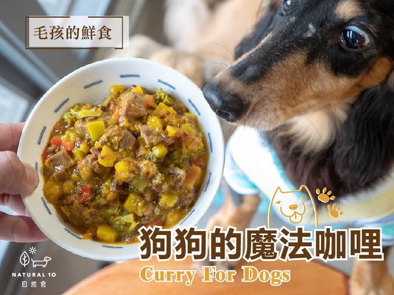 [寵物鮮食食譜] 狗狗魔法咖哩夢幻鮮食!