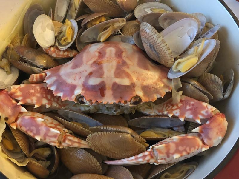 螃蟹無水海鮮鍋