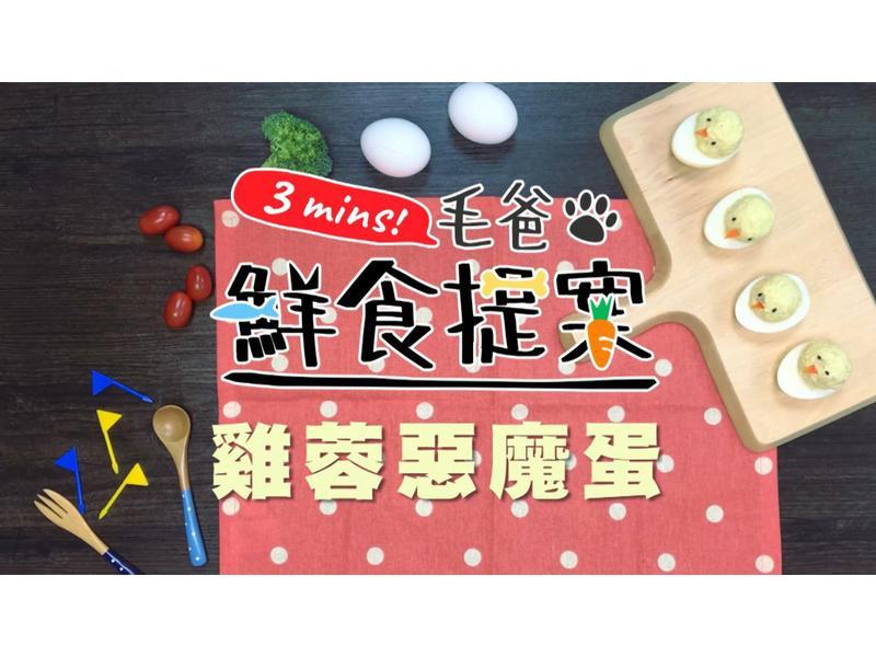 【毛爸鮮食】雞蓉惡魔蛋 (寵物料理)