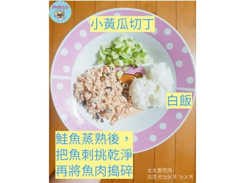 🐶寵物鮮食-寵物版鮭魚散壽司