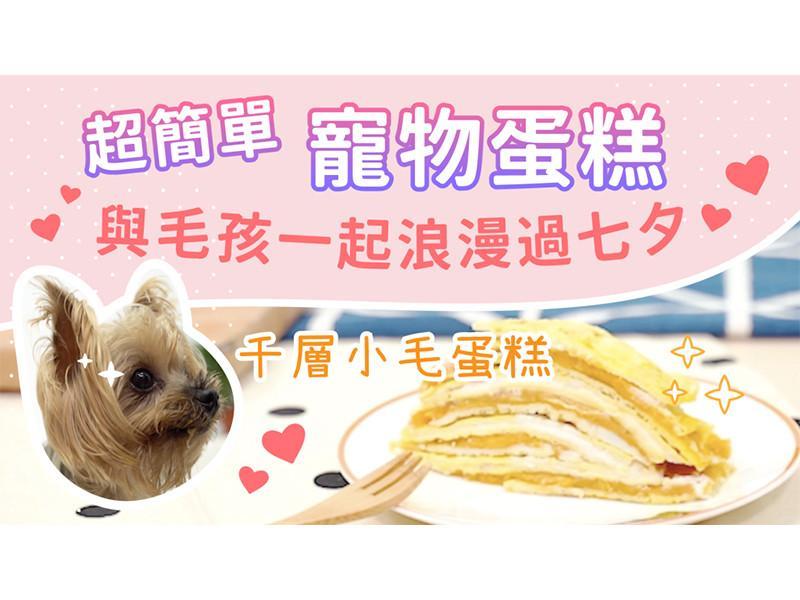 【毛爸鮮食】千層小毛蛋糕(寵物料理)