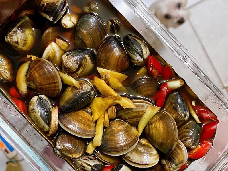 蒜辣醃蛤蠣《鹹蛤》