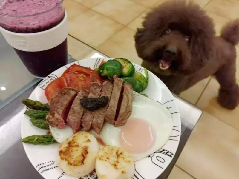 【今晚吃牛排🐂】菲力佐黑松露醬