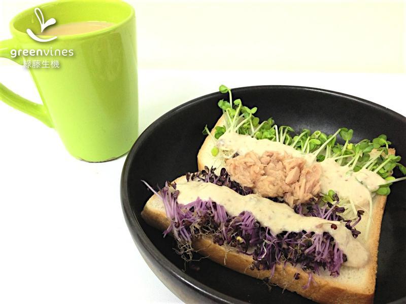 [綠藤芽食譜] 芽菜鮪魚沙拉土司