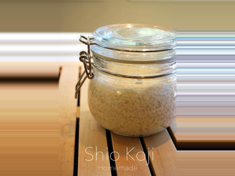 貝兒實驗室。自製鹽麴 Shio Koji