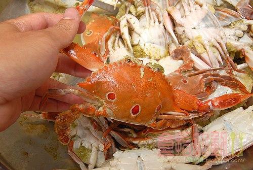 [食譜] 抓緊秋天的尾巴大啖秋蟹「清蒸三點蟹」之老饕們衝呀!